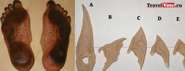 латексные уши и ноги